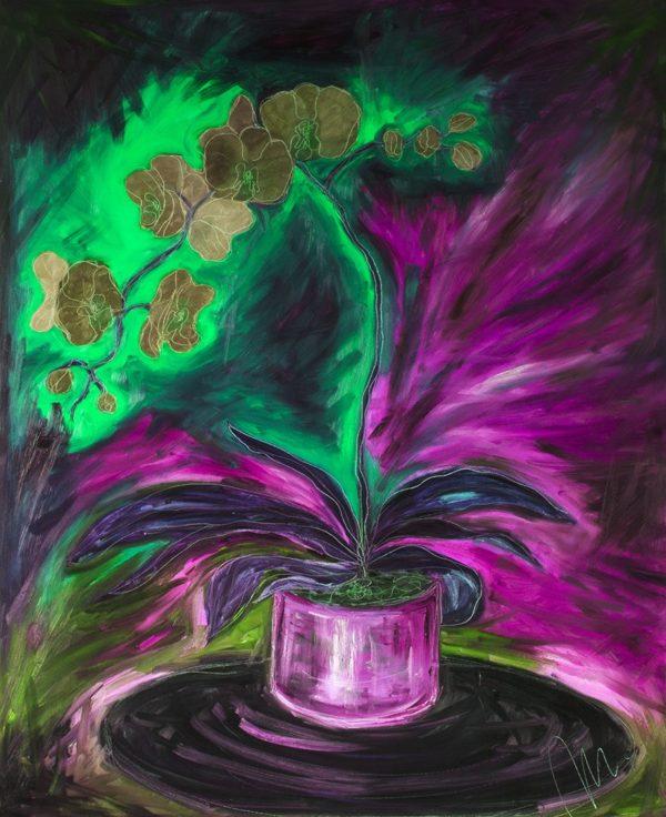 Orchidej barevná varianta 4