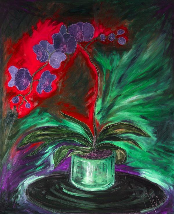 Orchidej barevná varianta 8