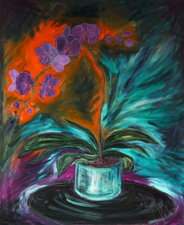 Orchidej barevná varianta 9
