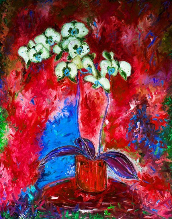Bílá orchidej - barevná varianta 3 web