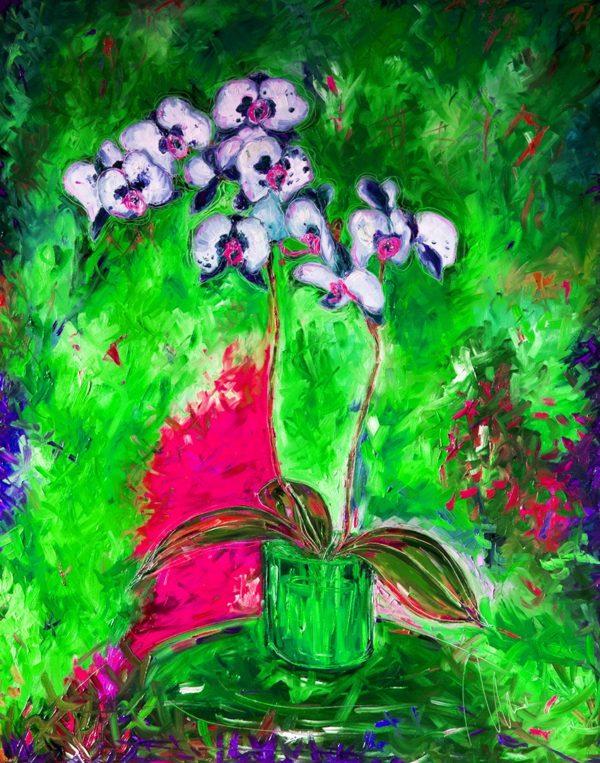 Bílá orchidej - barevná varianta 5 web