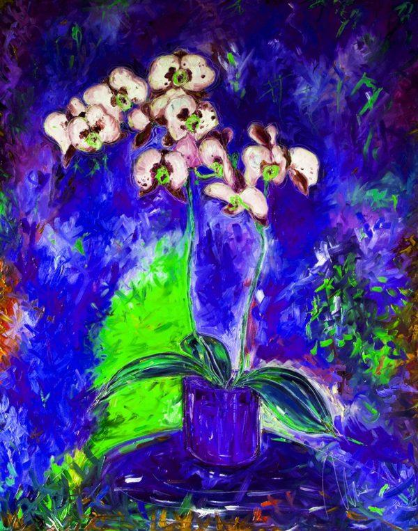 Bílá orchidej - barevná varianta 7 web