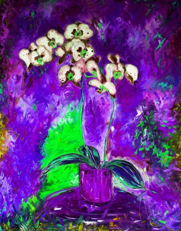 Bílá orchidej - barevná varianta 8 web