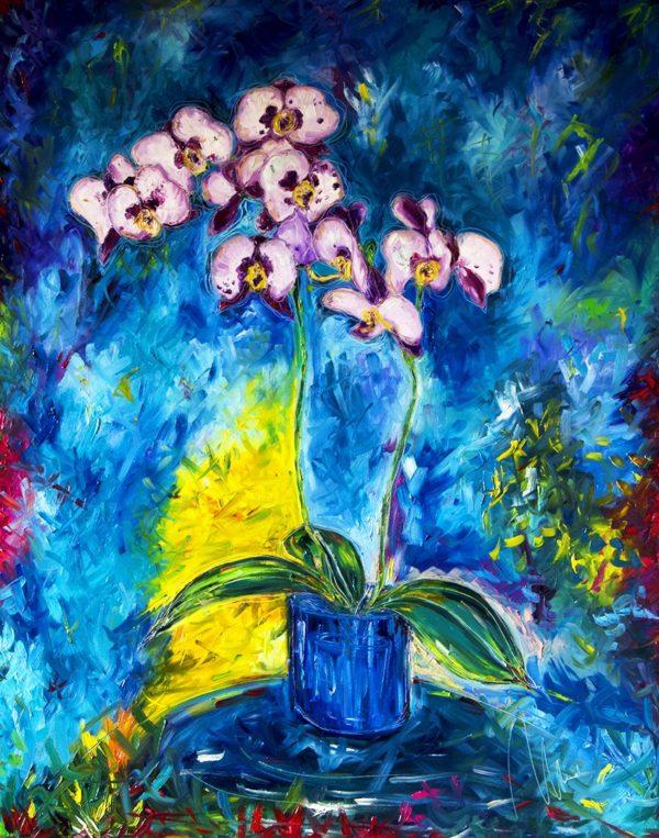 Bílá orchidej web